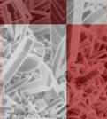 Hrvatsko mikroskopijsko društvo